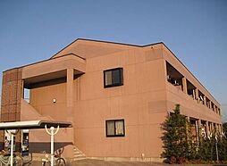 メゾンドウィステリア[1階]の外観