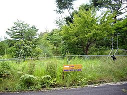 土地(佐那具駅から徒歩170分、261.00m²、100万円)