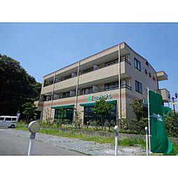 静岡県浜松市西区大平台4の賃貸マンションの外観