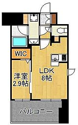 グランフォーレ小倉シティタワー 11階1LDKの間取り