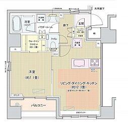 都営大江戸線 汐留駅 徒歩7分の賃貸マンション 5階1LDKの間取り