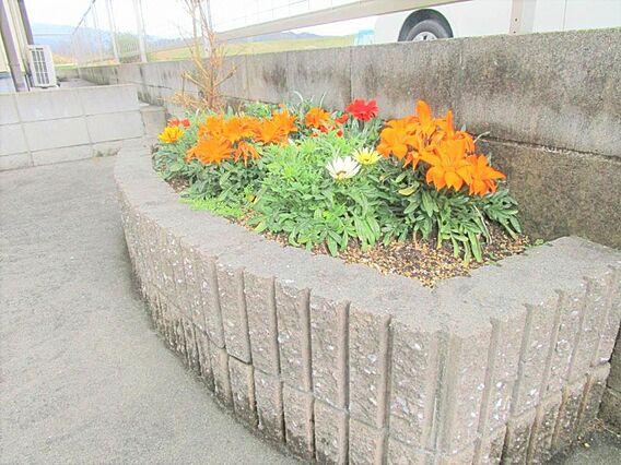花を植えるスペ...