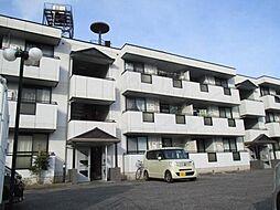 サファージュ高石 A棟[1階]の外観