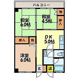 のぐちマンション[502号室]の間取り