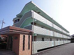 緑区 オースィニ21[3階]の外観