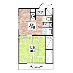 静岡県伊豆の国市南條の賃貸マンションの間取り