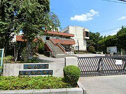 埼玉県越谷市東越谷の賃貸マンションの外観