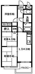 埼玉県所沢市上新井1丁目の賃貸マンションの間取り