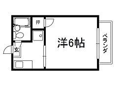 シティハイム常磐井[203号室]の間取り