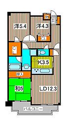 コスモ武蔵浦和プロシィード[2階]の間取り