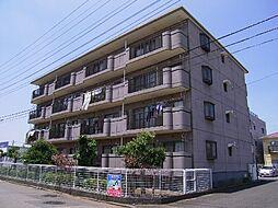 茨城県つくば市松代1丁目の賃貸マンションの外観