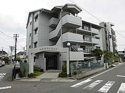 安堂寺マンション[402号室]の外観
