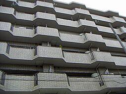 スカイハイム大喜[605号室]の外観