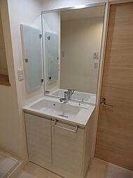 ミラー付洗面化粧台。身支度や洗濯・掃除等のし易いシャワー水栓です。壁面収納になっています。