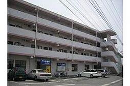 愛知県岡崎市中島町字井ノ上の賃貸アパートの外観