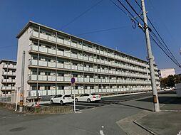 コンチェルト東合川II[4階]の外観