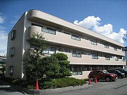 大阪府大東市灰塚4丁目の賃貸マンションの外観