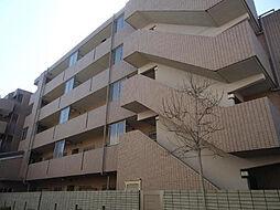 戸塚区上矢部町 イル・ティモーネ505[5階]の外観