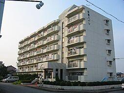 桜橋ハイツ[6階]の外観