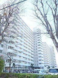 新松戸東パークハウス[7階]の外観