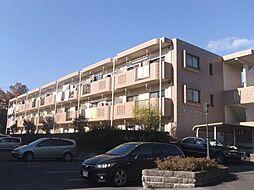 サンツヤマモトA[2階]の外観