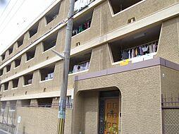 西松本マンション[4階]の外観