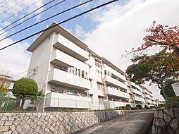 愛知県名古屋市緑区太子3丁目の賃貸マンションの外観