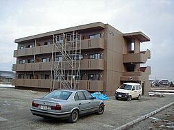 長野県松本市梓川倭の賃貸マンションの外観