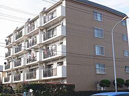 埼玉県上尾市上町1丁目の賃貸マンションの外観