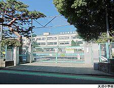 天沼小学校