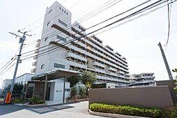 テラス本八幡[6階]の外観