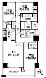 東京都港区南青山5丁目の賃貸マンションの間取り