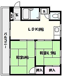 兵庫県神戸市東灘区深江本町1の賃貸マンションの間取り