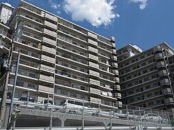 玉手山サンハイツ[11階]の外観