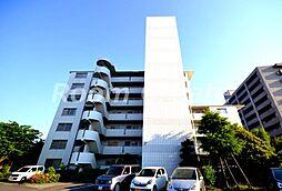 徳島県徳島市住吉6丁目の賃貸マンションの外観