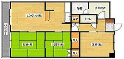広島県広島市南区本浦町の賃貸マンションの間取り