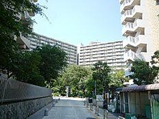 緑豊かな住宅地