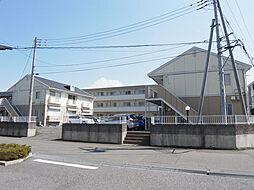 グレイスタウン A[1階]の外観