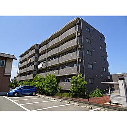 新潟県新潟市西区山田の賃貸マンションの外観