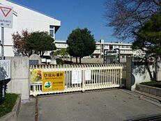 小学校水戸市立渡里小学校まで1071m