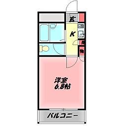 メゾンシェポル 5階1Kの間取り