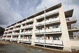 岡山県井原市木之子町の賃貸マンションの外観
