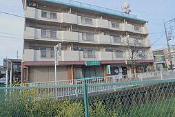 矢澤ハイツ[4階]の外観