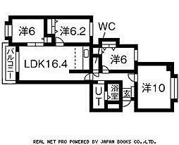 グレイス北円山旭堂第11[2階]の間取り