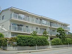 長野県長野市安茂里小市2丁目の賃貸マンションの外観