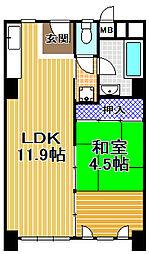 伝法団地3号棟[6階]の間取り