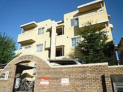 千葉県柏市藤心3丁目の賃貸マンションの外観