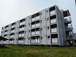 ビレッジハウス勝田3号棟[202号室]の外観