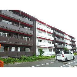 ヴィラナリー富田林2号棟[1階]の外観