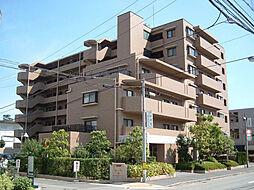 カルム夙川[504号室]の外観